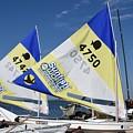 Boats 168 by Joyce StJames