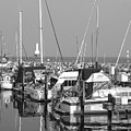 Boats And Reflections B-w by Anita Burgermeister