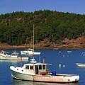 Boats At Bar Harbor by Kathleen Struckle