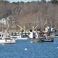 Boats At Rye  Harbor, Nh  by Jo-Ann Matthews