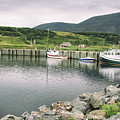 Boats Docked In Harbor Cape Bretton Island ,, Nova Scotia by Nick Jene
