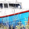 Boats In The Garden by Lori Mahaffey