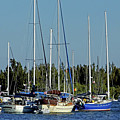 Boats In The Indian River Lagoon by D Hackett