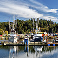 Boats In Winchester Bay by James Eddy