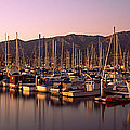 Boats Moored At A Harbor, Stearns Pier by Panoramic Images