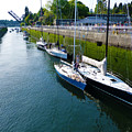 Boats Moving Into Chittenden Locks Seattle by Susan Porter