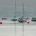 Boats On Carsington Water by Rod Johnson