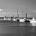 Boats On The Estuary by Tom Buchanan