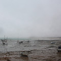 Boats With Light Rain At Low Tide by Tom Conway
