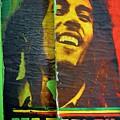 Bob Marley Door At Pickles Usvi by Tamara Michael