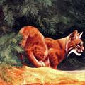 Bobcat by Kay Robinson