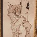 Bobcat Kitten Curiosity by Angel Abbs-Portice