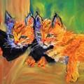 Bobcat Kittens 1 by Deborah Lewitt