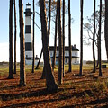 Bodie Island Light Through The Pines by Shirley Whitenack