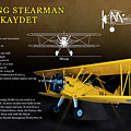 Boeing Stearman N2s Kaydet by Richard Hamilton