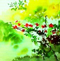 Boganwel by Anil Nene