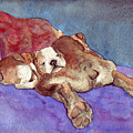Bogs N Hugs by Julia Collard