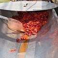 Boiled Crawfish by Jim DeLillo