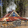 Boiling Sap To Make Maple Syrup  by Betty  Pauwels
