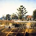 Bois De Fleche Plantation Louisiana 1861 by Mountain Dreams