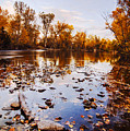 Boise River Autumn Glory by Vishwanath Bhat