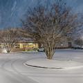 Bojangles Blizzard by Robert Loe