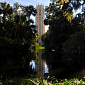 Bok Tower Gardens by David Lee Thompson