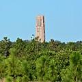 Bok Tower In December by Carol Bradley