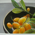 Bol De Kumquats by Muriel Dolemieux