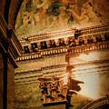 Bologna, Italy - Last Rays by Mark Forte