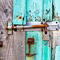 Bolted Door by Tom Gowanlock