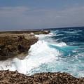 Bonaire North Shore 2 by June Goggins