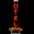 Bonanza Lodge Motel by David Lee Thompson