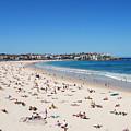 Bondi Beach In Sydney Australia by Catherine Sherman