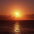 Bondi Beach Sunrise by Chris Lane