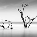 Boneyard Beach Viii by Ivo Kerssemakers