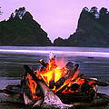 Bonfire On The Beach, Point Of The by Panoramic Images