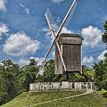 Bonne Chiere Windmill by Phyllis Taylor