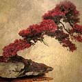 Bonsai Display by Jessica Jenney