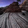 Bonzai In The Night Utah Adventure Landscape Photography By Kaylyn Franks by Kaylyn Franks
