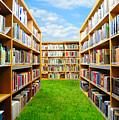 Book Garden by Roman Rodionov