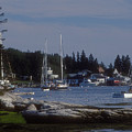Boothbay Harbor In Maine by Darleen Stry