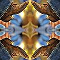 Boots Kaleidoscope by Joan Carroll
