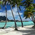 Bora Bora Beach Hammock by Owen Ashurst