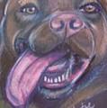 Bordeaux Mastiff Portrait by Jamey Balester