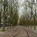 Bordeaux Tram by Kevin Bain