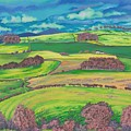 Border Country by Lynne Henderson