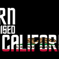 Born And Raised In California Birthday Gift Nice Design by StyloMart Tees