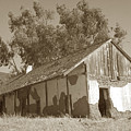 Boronda  Adobe In Carmel Valley 1940 by California Views Archives Mr Pat Hathaway Archives