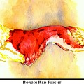 Borzoi Red Flight by Kathleen Sepulveda